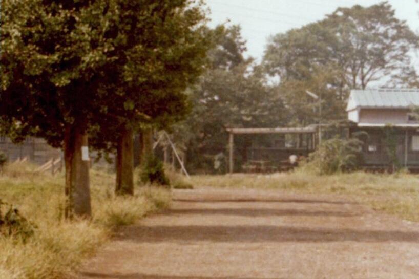 1971年の豊多摩 銀杏並木となまけの森